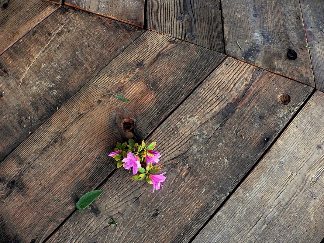 Legno antico antico abete for Vecchie tavole legno